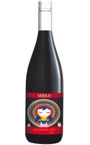 4-gamay-miolo-vinhobasico