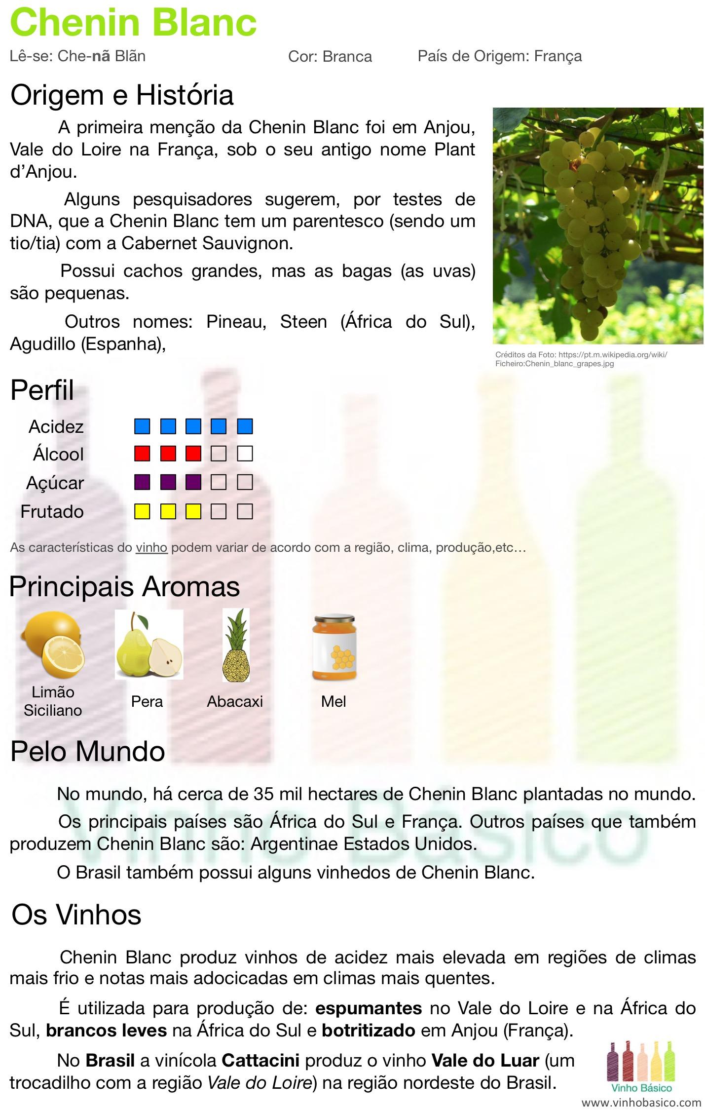 Chenin Blanc vinhobasico