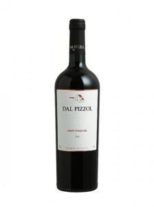 gamay-dal-pizzol-vinhobasico