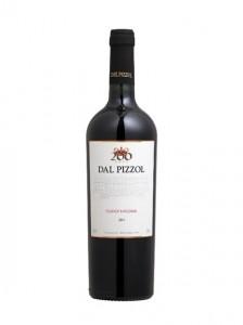 touriga-nacional-dal-pizzol-vinhobasico