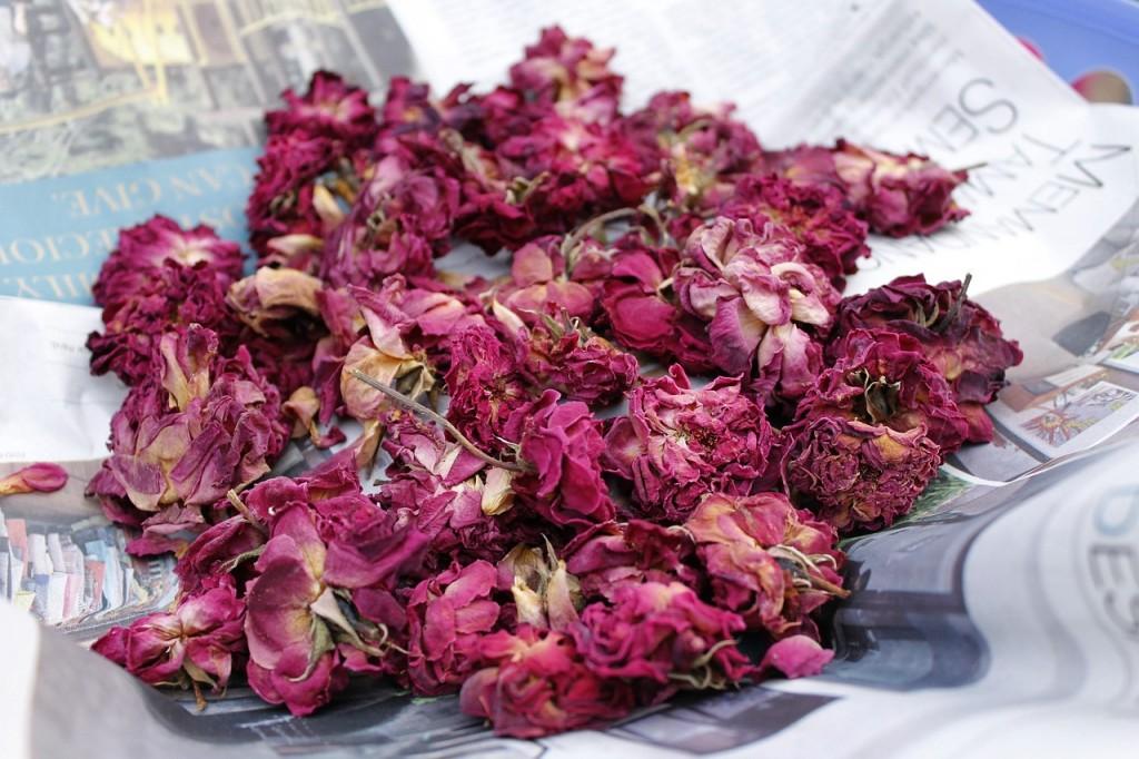 rosas secas aromas florais vinhobasico